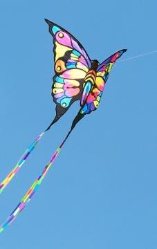 buy chinese kite chinese handicrafts