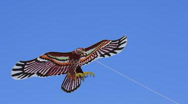 chinese kites from ancient kites for military to modern led kites